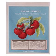 ESSCHERT DESIGN Osivo Tomato