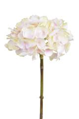 EGO DEKOR Květina hortenzie, růžová