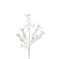 EGO DEKOR Větev bílá