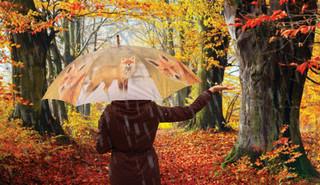 ESSCHERT DESIGN Deštník lesní zvířata, balení obsahuje 4 kusy!