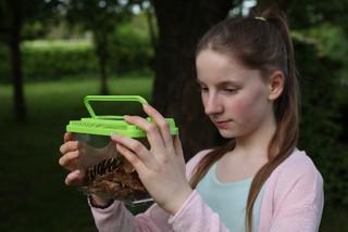 ESSCHERT DESIGN Krabička na zkoumání hmyzu