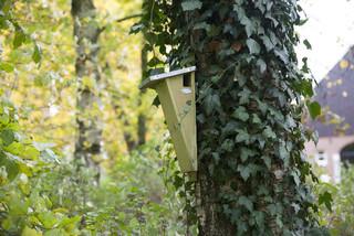 "ESSCHERT DESIGN Hnízdo ""BEST FOR BIRDS"" pro Šoupálka dlouhosrstého"
