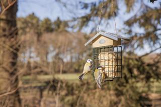 ESSCHERT DESIGN Krmení pro ptáčky