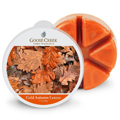 GOOSE CREEK Vosk COLD AUTUMN LEAVES, 59g, do aroma lampy